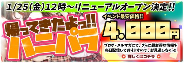 池袋『ハニーパラダイス』1月25日グランドオープン!