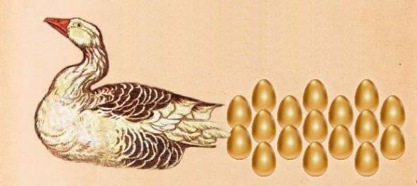 新人嬢は金の卵を産むガチョウ