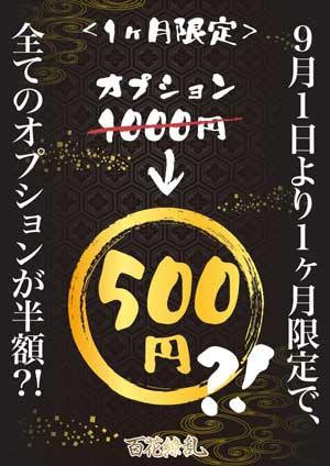 五反田百花繚乱500円