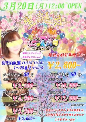 新宿にゃんパラ2周年誕生祭