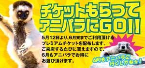 五反田アニマルパラダイスプレミアムチケット