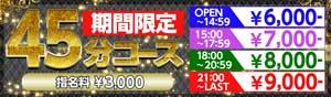 赤羽アイドルコレクション45分コース