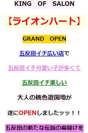五反田ライオンハートグランドオープン