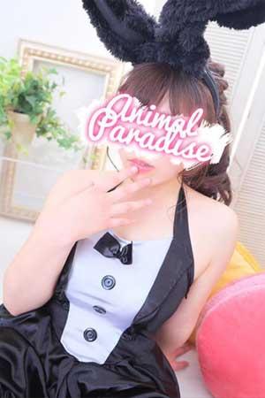 五反田アニマルパラダイスふんわり系女子代表の「チャン」ちゃん