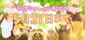 五反田アニマルパラダイス27日までお得なクーポン配布中!