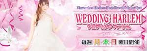 五反田ハーレムビートウェディングドレス