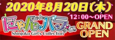 新宿にゃんにゃんパラダイス8月20日(木)新宿歌舞伎町にグランドオープン