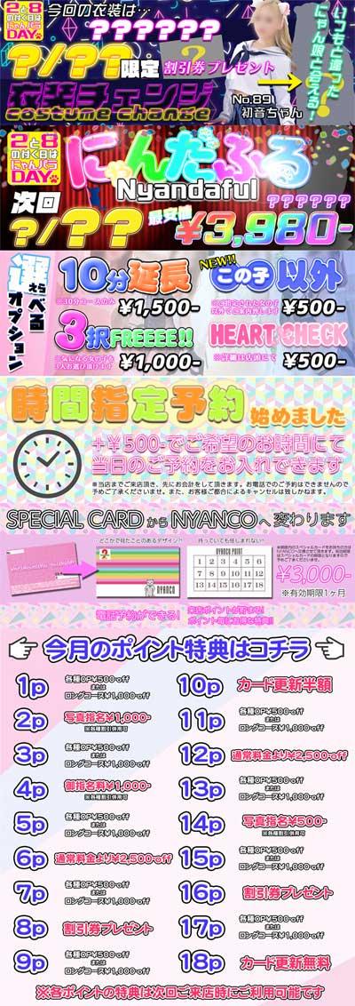 新宿にゃんにゃんパラダイス一ヶ月3000円で購入