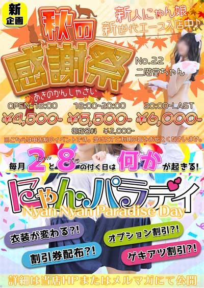 新宿にゃんにゃんパラダイスフリー最安4500円。