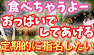 五反田『アニパラ』エロに真面目なぽっちゃりさん